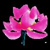 LG_identite_flower-1