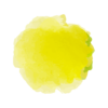 PoP_logo-VF3_couleur jaune
